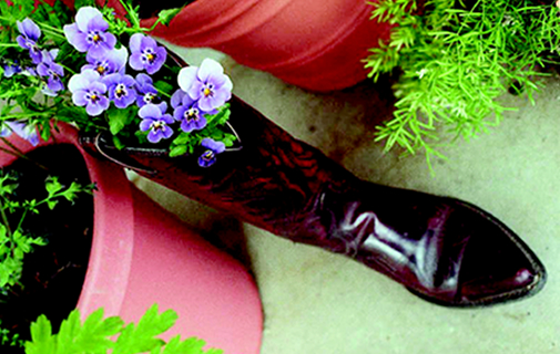 Try recycled boots as planters to make your garden grow