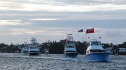 Early start: Fishing crews head out of Hamilton Harbour, on the hunt for prize-winning billfish. *Photo supplied