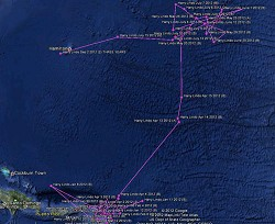 Harry Lindo the tiger shark has been tracked completing a clear migratory circuit around the Atlantic. *Image supplied
